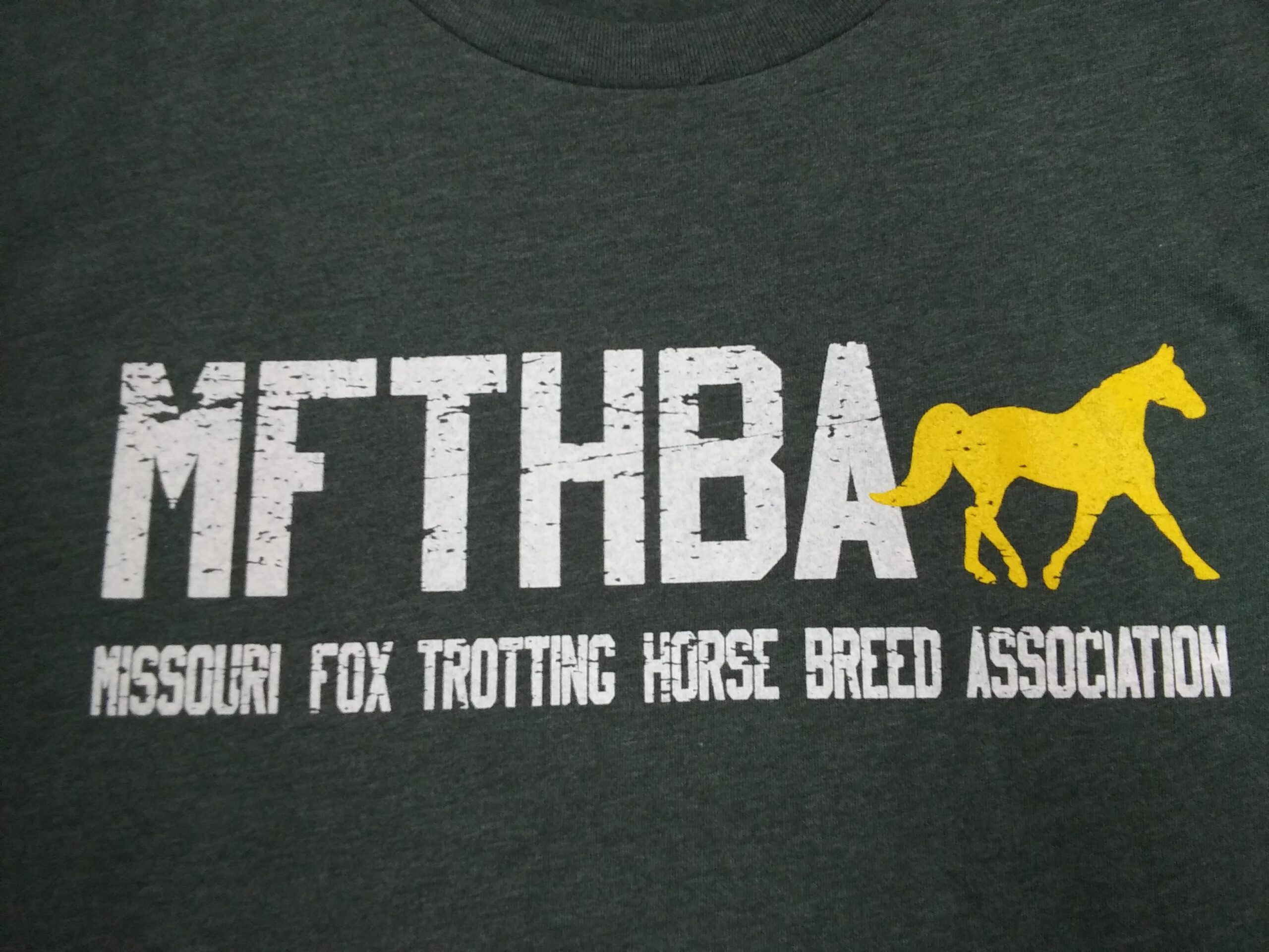 Heather Forest Green- Fox Trotter Tee