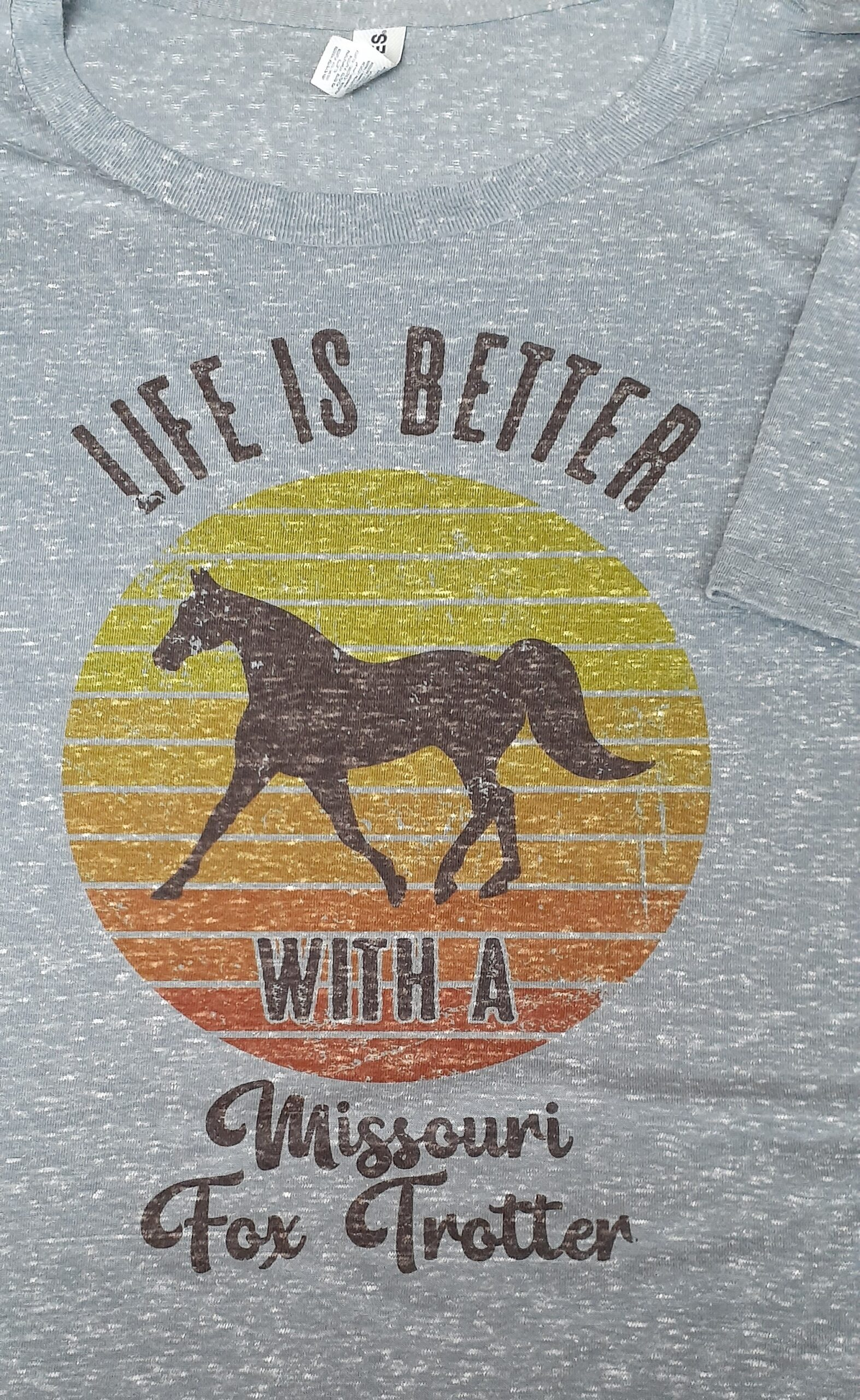 Life Is Better With A Missouri Fox Trotter