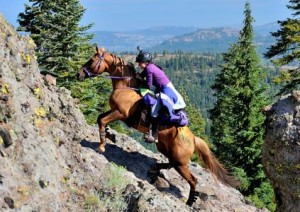 """""""My heart was pounding when Asali and I were on Cougar Rock during the Tevis Cup,"""" said JayaMae Gregory.  Photo: Diana Hiiesalu--Gore/Baylor Photography"""